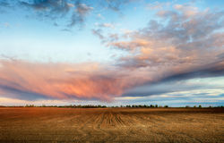 Plowed field with red clouds Royalty Free Stock Photo