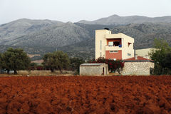 Plowed field with red soil. Crete, Greece. Plowed field with red soil in the  Crete, Greece Royalty Free Stock Images