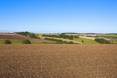 Plowed field in a scenic landscape Stock Image