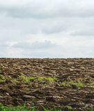 Plowed field and sky with clouds Royalty Free Stock Photo