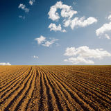 Plowed field and sky in sunset Stock Image
