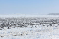 The plowed field in snow in the  spring Stock Photo