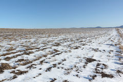 The plowed field in snow in the  spring Royalty Free Stock Photo