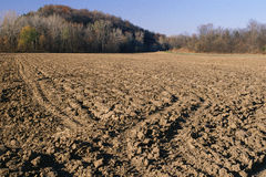 Plowed field of soil. Plowed field of black soil at edge of woods Royalty Free Stock Photography