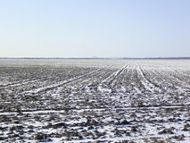 Arable field. The plowed field. Spring processing of farmlands Stock Photos