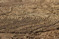 Plowed field in spring. Stock Images