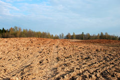 Plowed field. In spring time with blue sky stock photo