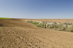 Plowed field in spring time Royalty Free Stock Images