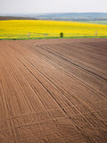Plowed field in spring-time with tractor tyre track Stock Images