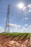 Plowed field in the sun with power pole stock image