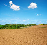 Plowed field in sunny day. Stock Photos