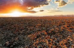 Plowed field at sunset Royalty Free Stock Photography
