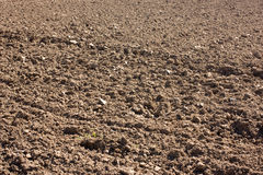 Plowed field textured surface with grooves Stock Images