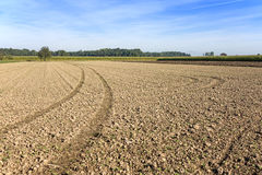 Plowed field with tractor tire tracks Royalty Free Stock Photos