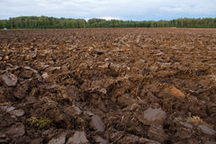 Plowed field with tractor traces in spring time, farm soil background Royalty Free Stock Photo