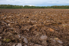 Plowed field with tractor traces in spring time, farm soil background Royalty Free Stock Images