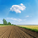 Plowed field and white cloud in blue sky Royalty Free Stock Images