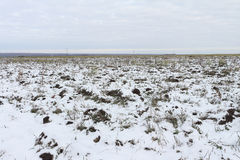 The plowed field in the winter Royalty Free Stock Photo