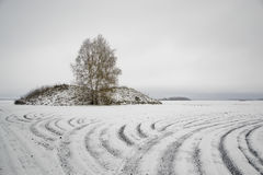 Plowed field in winter Stock Image