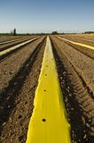 Plowed Field with yellow plastic strip Stock Images