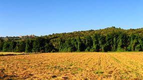 Plowed Fields Royalty Free Stock Photo
