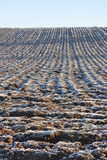 Plowed fields Stock Images