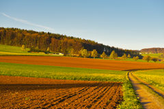Plowed Fields Royalty Free Stock Photography