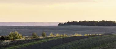 Plowed fields. Autumn evening in the agrarian fields Stock Images