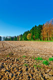 Plowed Fields Stock Image