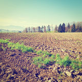 Plowed Fields Stock Photo
