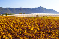 Plowed fields and green house Stock Images