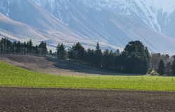 Plowed fields in the highlands Royalty Free Stock Photo