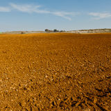 Plowed Fields Stock Photography