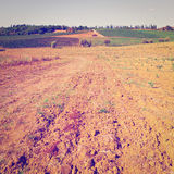 Plowed Fields Royalty Free Stock Images