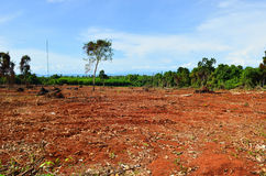 Plowed fields in Koh mak Royalty Free Stock Photos
