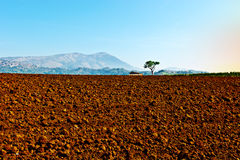 Plowed  Fields Royalty Free Stock Image