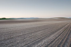 Plowed fields at sunset Stock Image