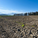 Plowed fields in Switzerland. Plowed fields on the background of snow-capped Alps. Agriculture in Switzerland, arable land and pastures Stock Image