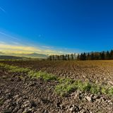 Plowed fields in Switzerland. Plowed fields on the background of snow-capped Alps at sunrise. Agriculture in Switzerland, arable land and pastures Royalty Free Stock Image