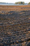 Plowed frosty autumn farmland field and mist Royalty Free Stock Images