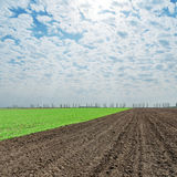 Plowed and green fields under clouds Royalty Free Stock Photography