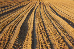 Plowed ground Royalty Free Stock Photography