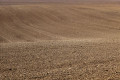 Plowed and harrowed field Stock Images