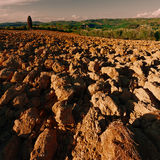 Plowed Hills Stock Photography