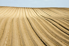 Plowed field. A plowed hillside field with furrows and blue sky Stock Images