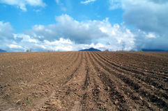 Plowed land. Plowed fields fresh in early spring stock photography