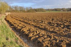 Plowed land. Wide field of plowed land Royalty Free Stock Photos