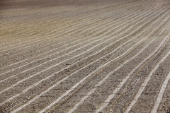 Plowed land. close-up. An agricultural field which has been plowed for planting crops. Spring. close-up Stock Images