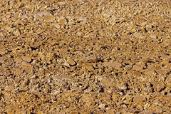 Plowed land   close up. Stock Photography