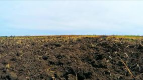 Plowed land on the field. Camera moves across the field with a plowed land stock footage